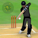Smashing Cricket – a cricket game like none other 3.1.3 MOD APK