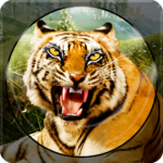 Forest Animal Hunting 2018 – 3D 1.2.6 MOD (Unlimited Levels)